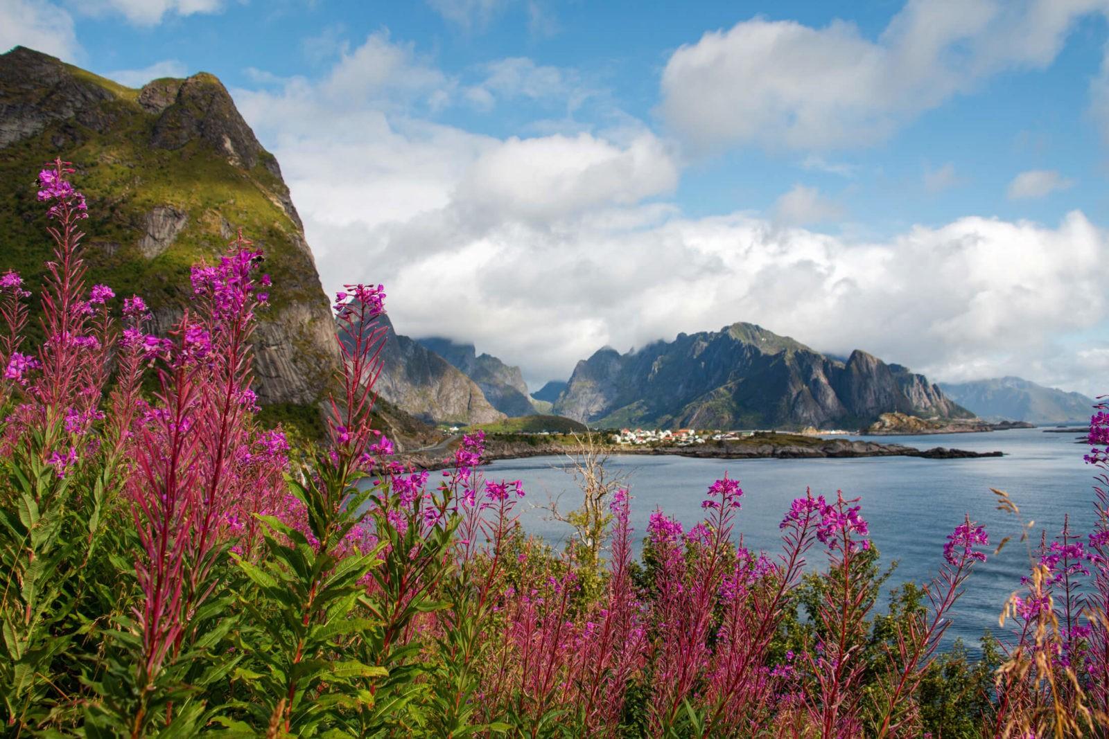 Reine op de Lofoten (Foto: julieweiss10/Foap/Visitnorway.com)
