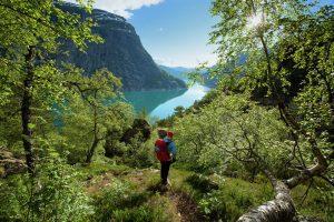 Hiking langs de fjord (Foto: Asgeir Helgestad/Artic Light AS/visitnorway.com)
